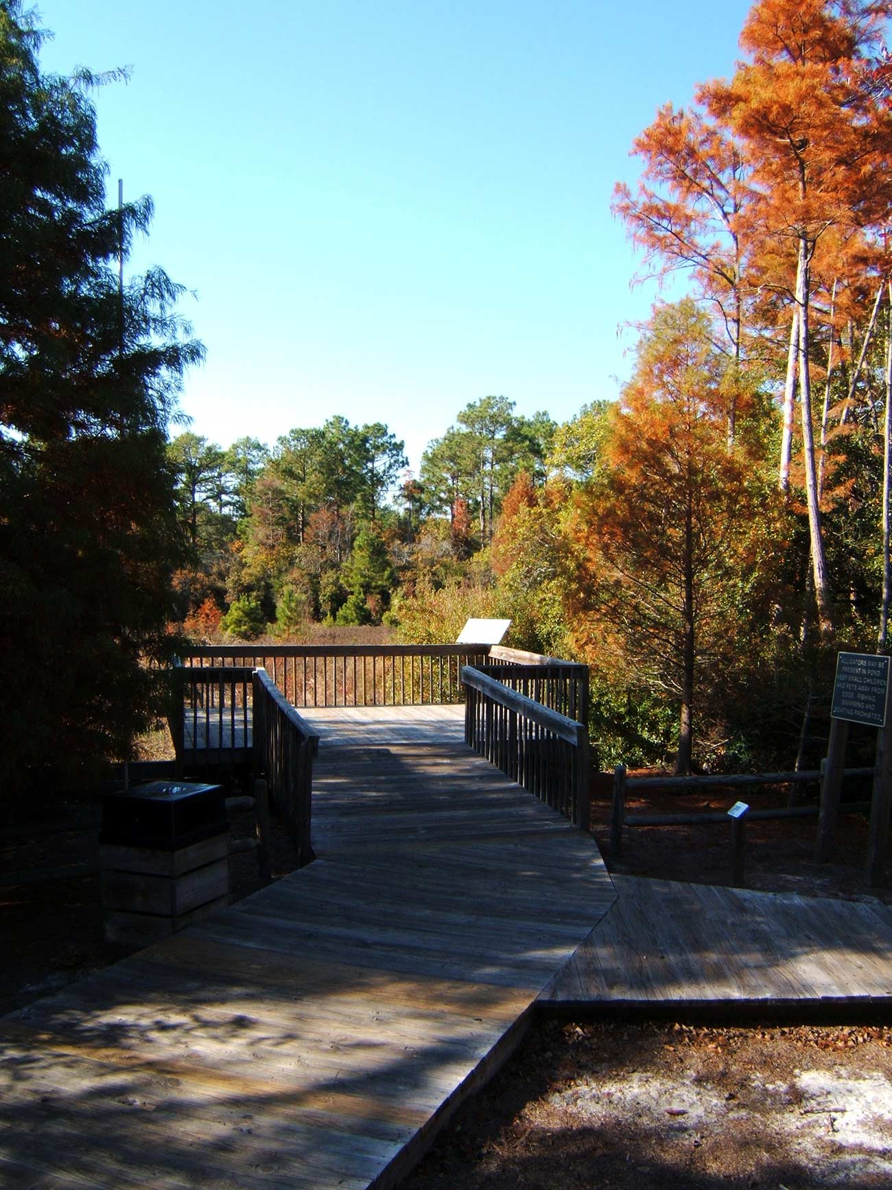 A viewing platform off the trail and over the water at Halyburton Memorial Park